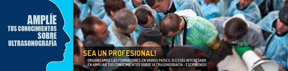 Las formaciones profesionales realizadas en el extranjero en el campo de ultrasonografía en la reproducción animal. Comprueba!