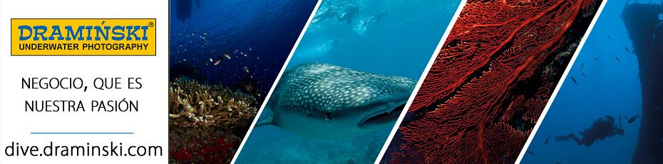 Los paísajes submarinos impresionantes vistos por  la lente del dueño de la empresa DRAMINSKI. Comprueba!