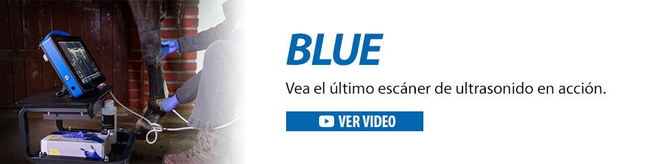 Ecógrafo de ultrasonido de vanguardia Dramiński Blue para diagnóstico de caballos