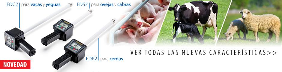 Detectores de celos modernos en la cría de animales. Inseminación Efectiva.