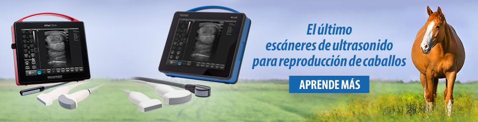 Dramiński 4Vet slim y BLUE El último escáneres de ultrasonido para reproducción de caballos